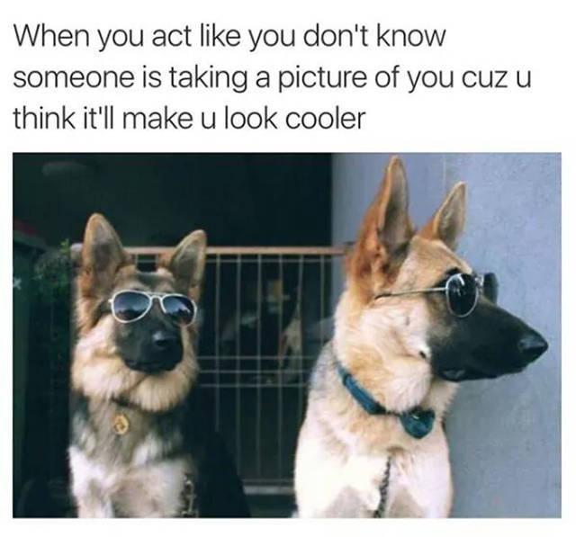 Bruh so true - meme
