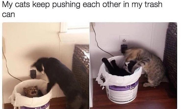 nooo you're the trash - meme