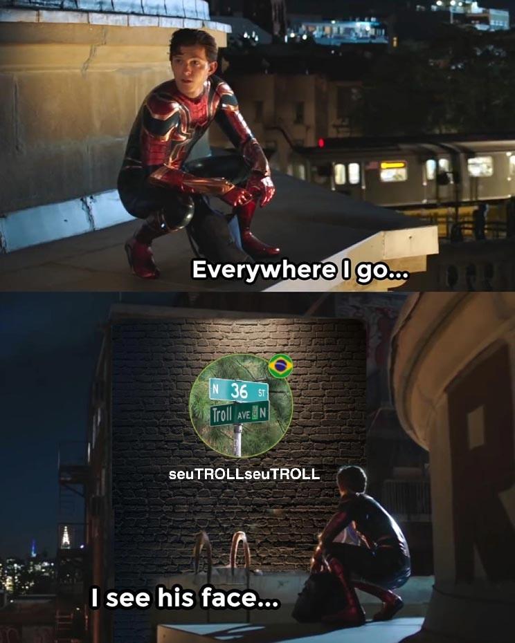Seutroll heretizador - meme