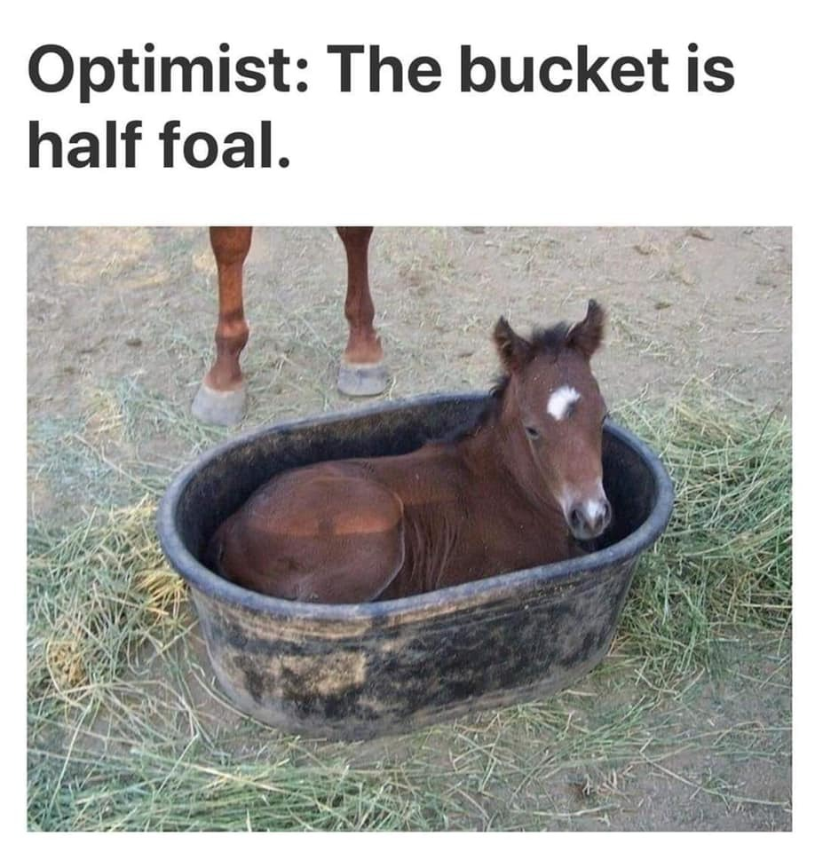 Realist: The Bucket is 100% Rubber, Actually - meme