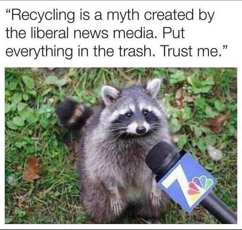 That's what the Raccoon Mafia wants you to do - meme