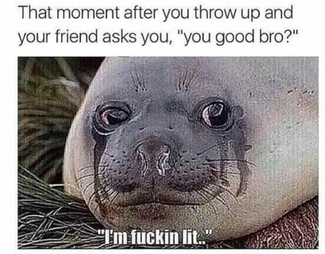 Chug that shit - meme