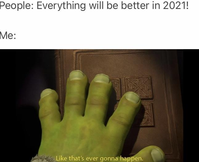 2021 dreamers be like - meme