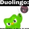 Duolingo no te enojes :'(