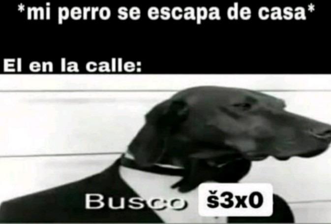 SECSOOOOOOO - meme