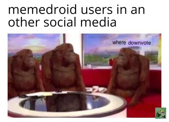 MeMeDrOiD bEsT sOcIaL mEdIa