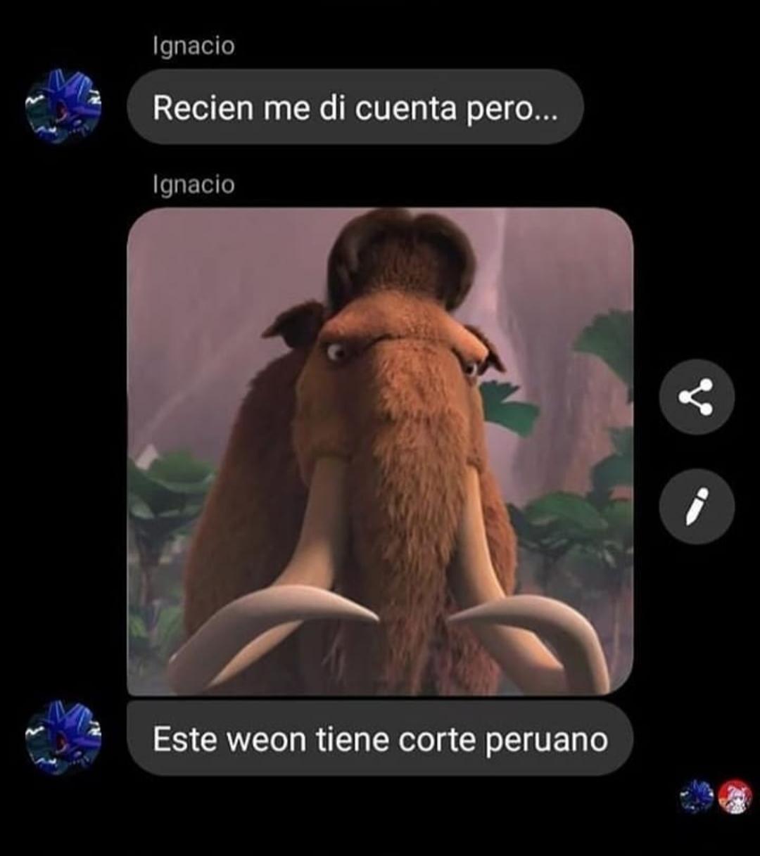 Maní peruano - meme