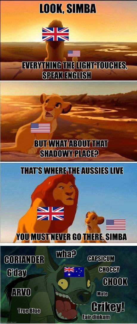 This is why there are no lions in Australia - meme