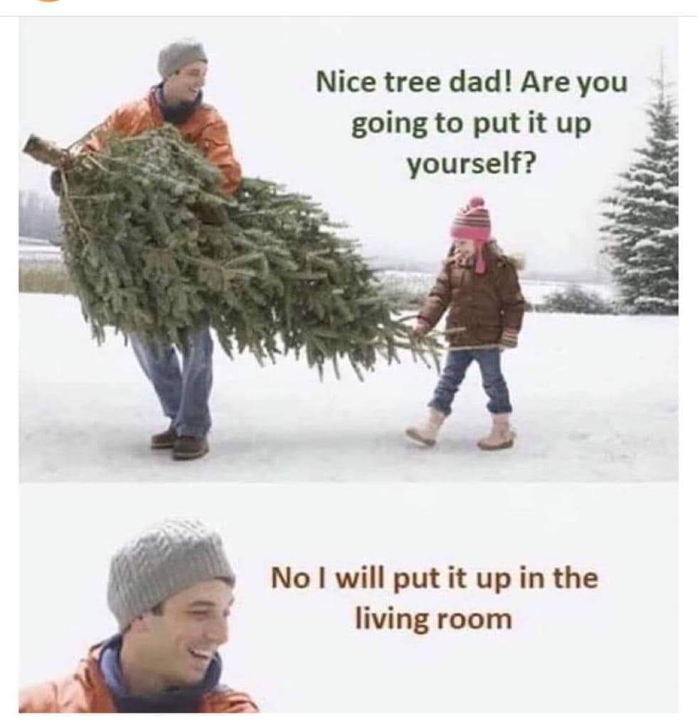 What kind of tree do you use for Christmas? - meme