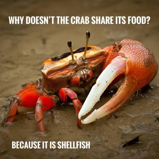 Rude crustacean - meme
