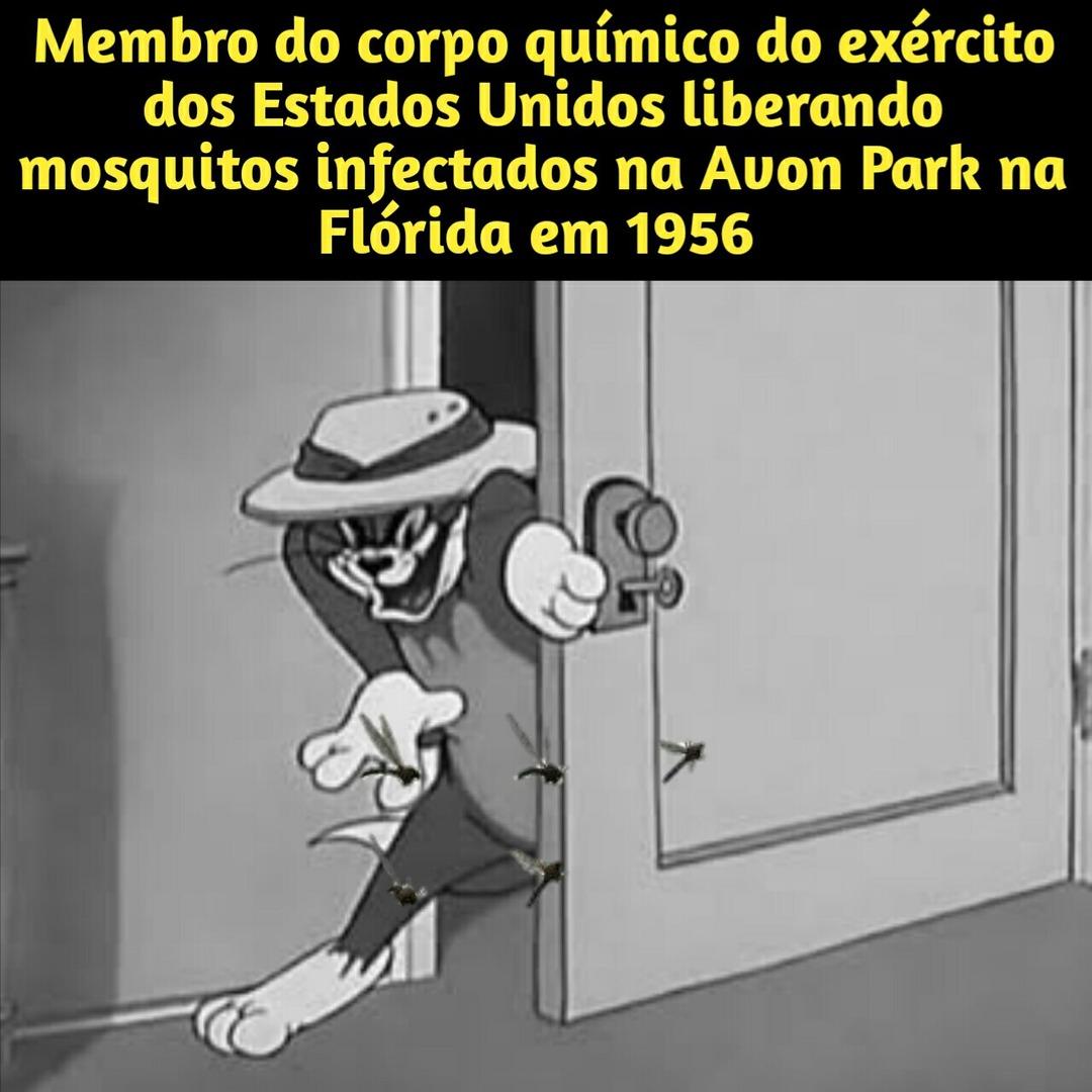 Liberaram mosquitos para criação de armas biológicas - meme