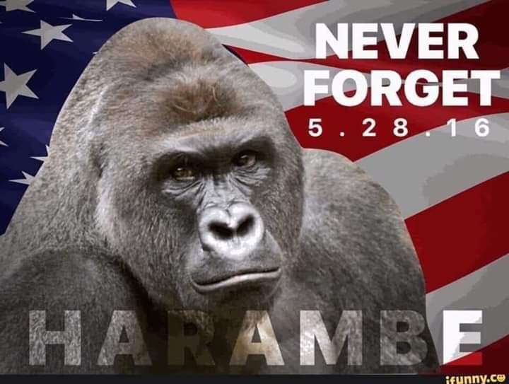 Never forget, a true hero died that day. Dicks Out! - meme