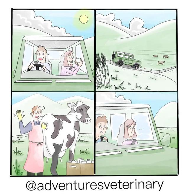 FOTOGRAFAR A PAISAGEM :) - meme