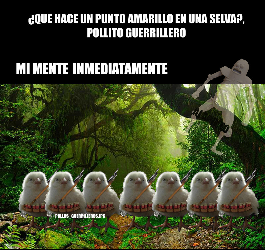 POLLOS_GUERRILLEROS.JPG - meme
