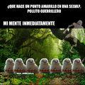 POLLOS_GUERRILLEROS.JPG