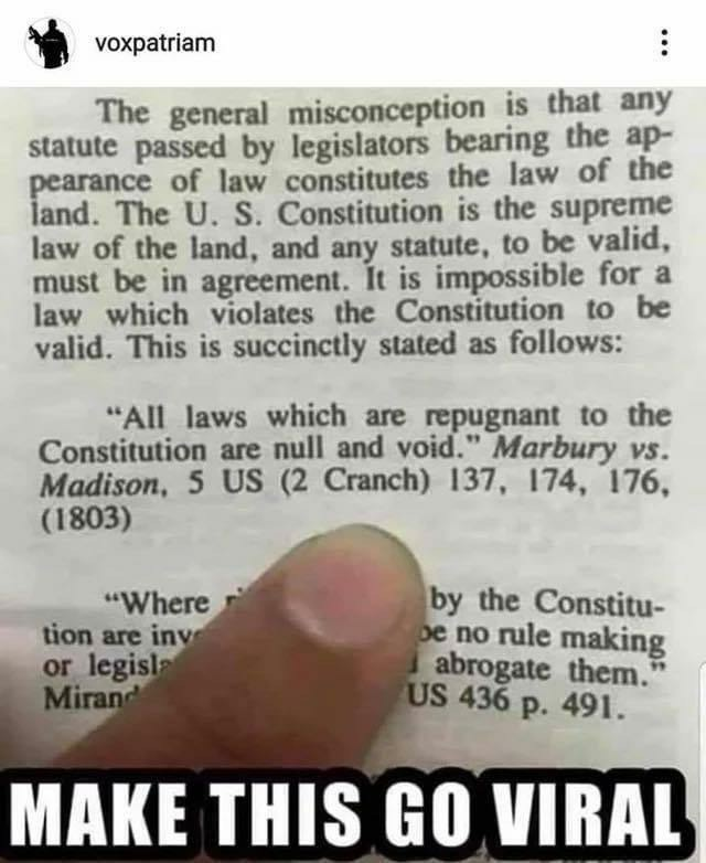 Fuck unconstitutional laws - meme