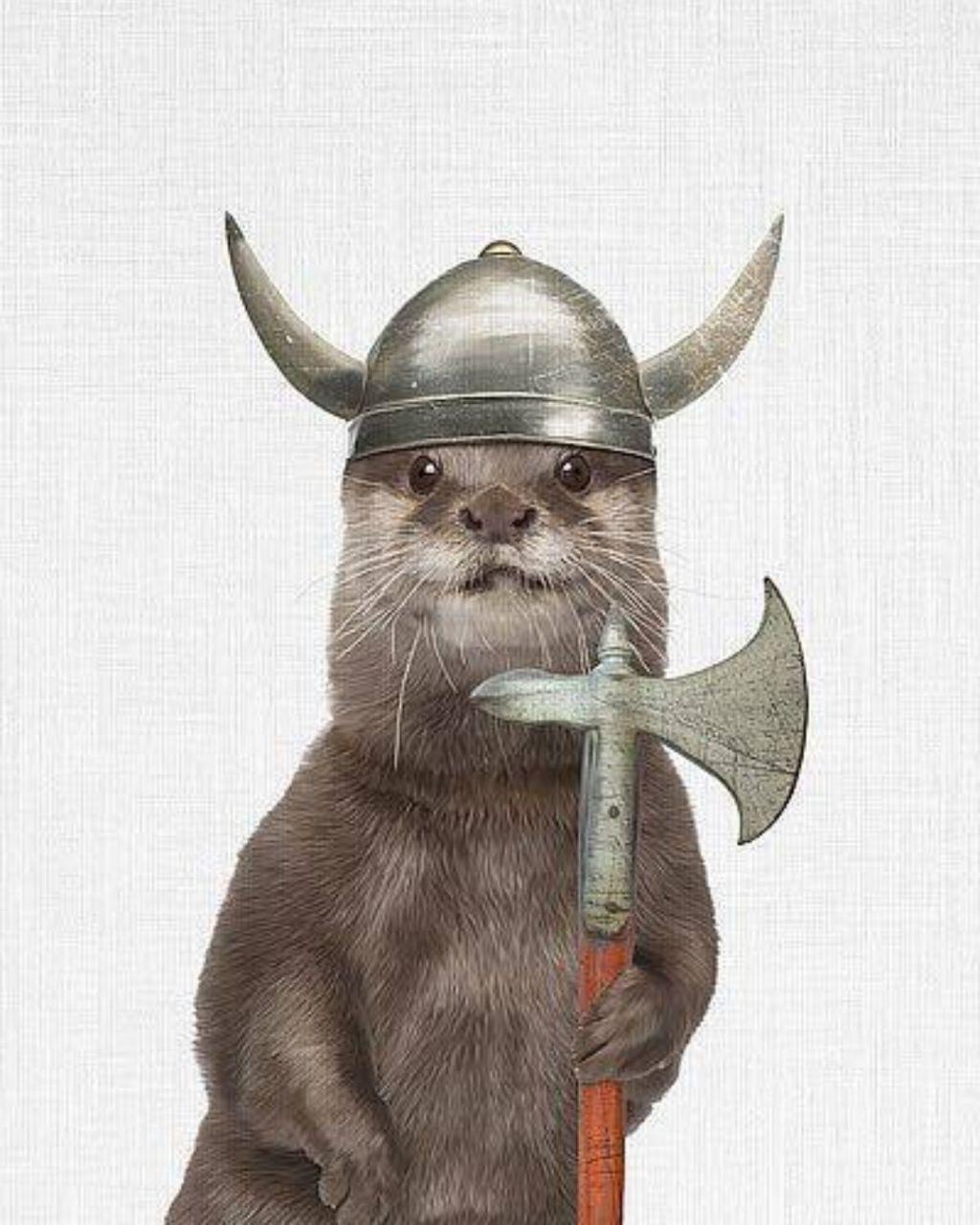 Norsk Arisk Otter - meme