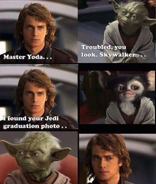 I didn't even know Yoda went to College - meme