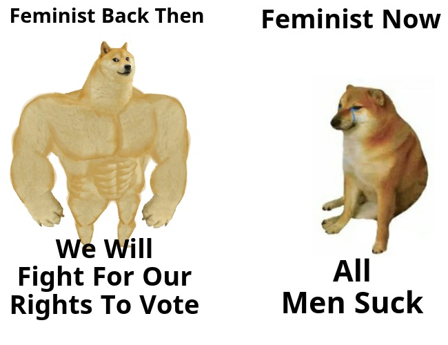 *Not All Feminist Are Like This But A Lot Of Them Are - meme