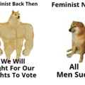 *Not All Feminist Are Like This But A Lot Of Them Are