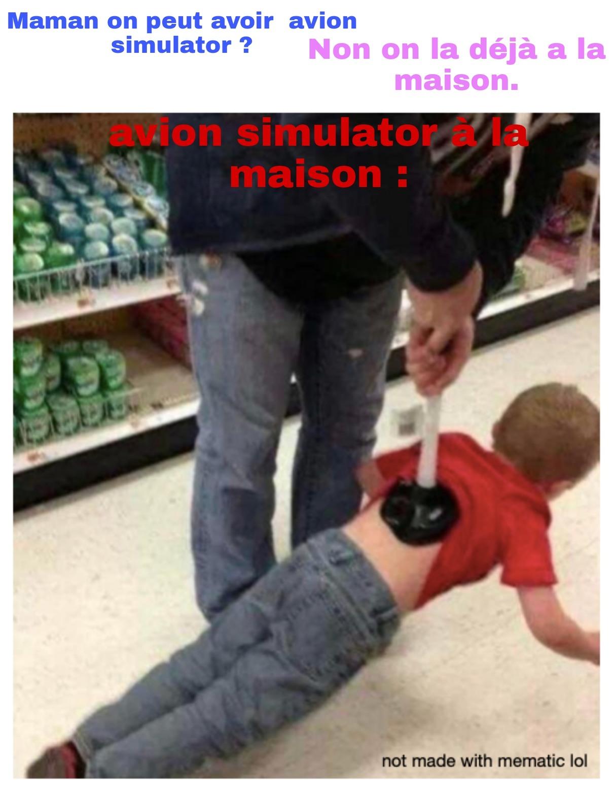 Avion simulator._. - meme