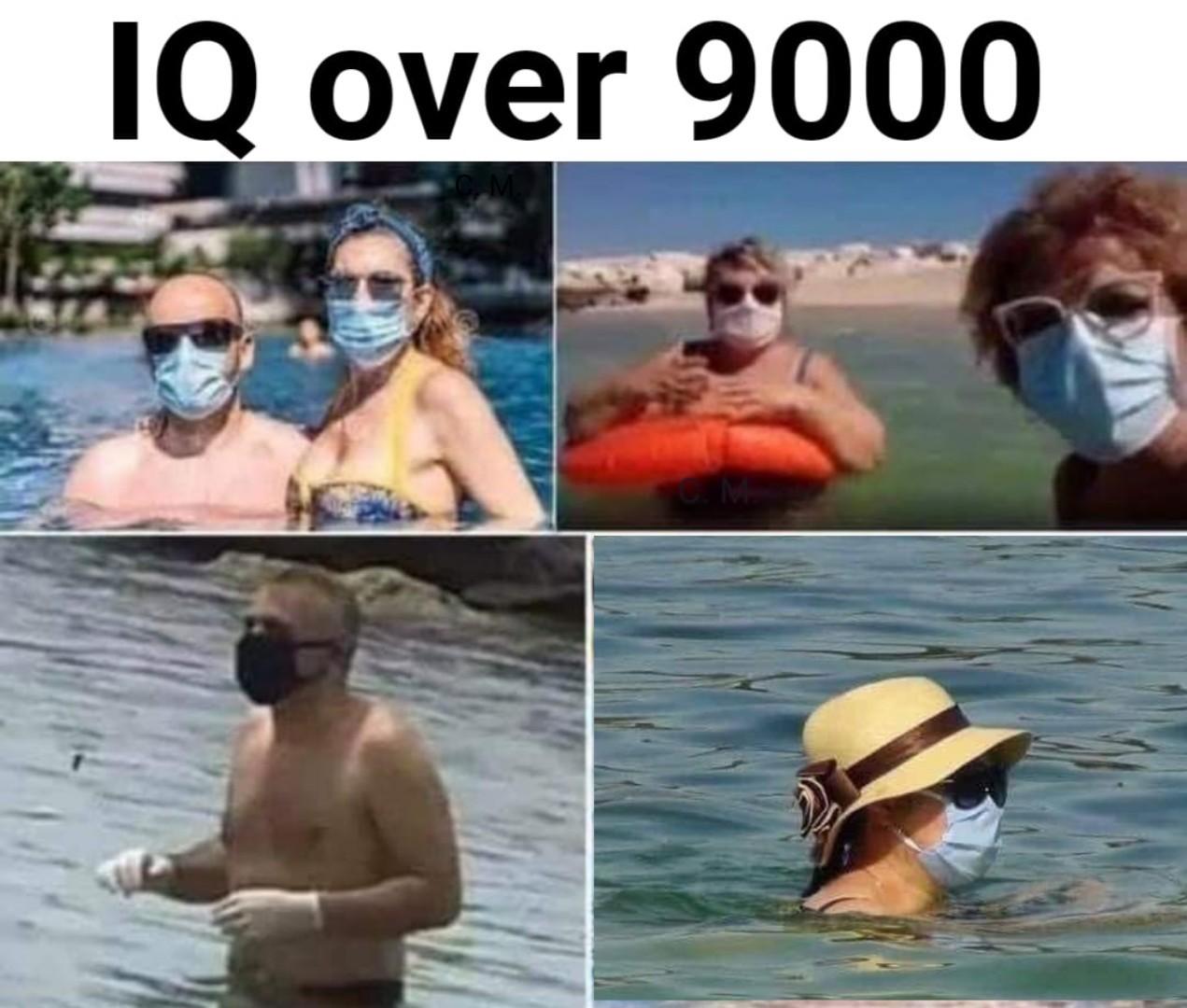 Their IQ is too damn high - meme