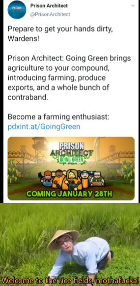 Welcome to the rice fields - meme