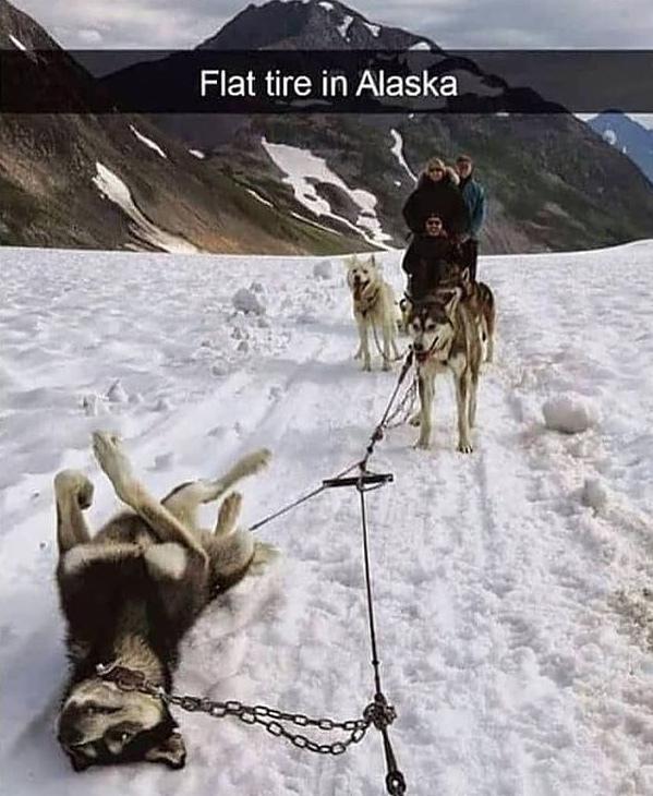 flat tire - meme